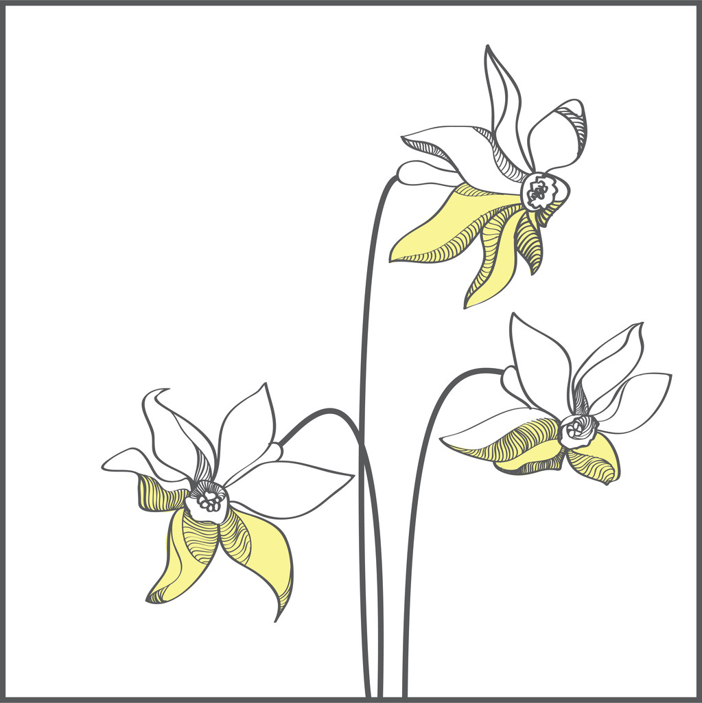 Stylized yellow narcissus flowers - vector illustration
