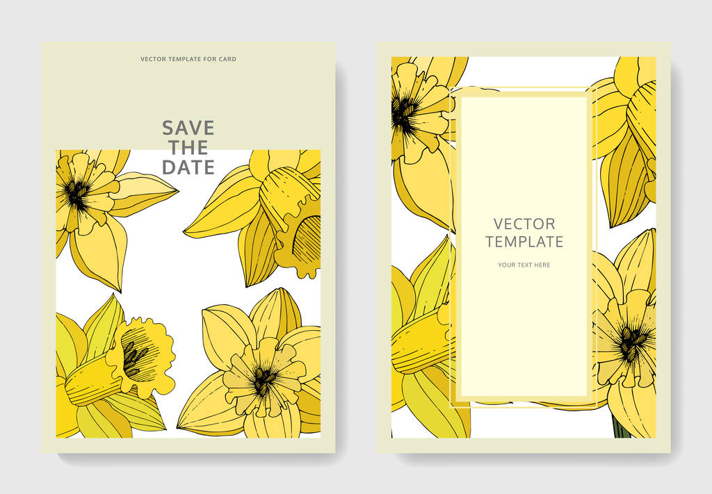 Vector Narcissus flowers. Wedding cards with floral decorative borders. Yellow engraved ink art. Thank you, rsvp, invitation elegant cards illustration graphic set banners.