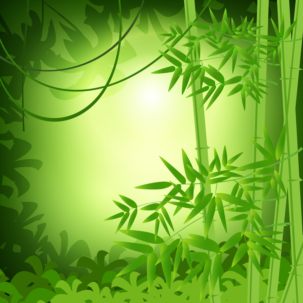 Bamboo abstract background. Vector illustration