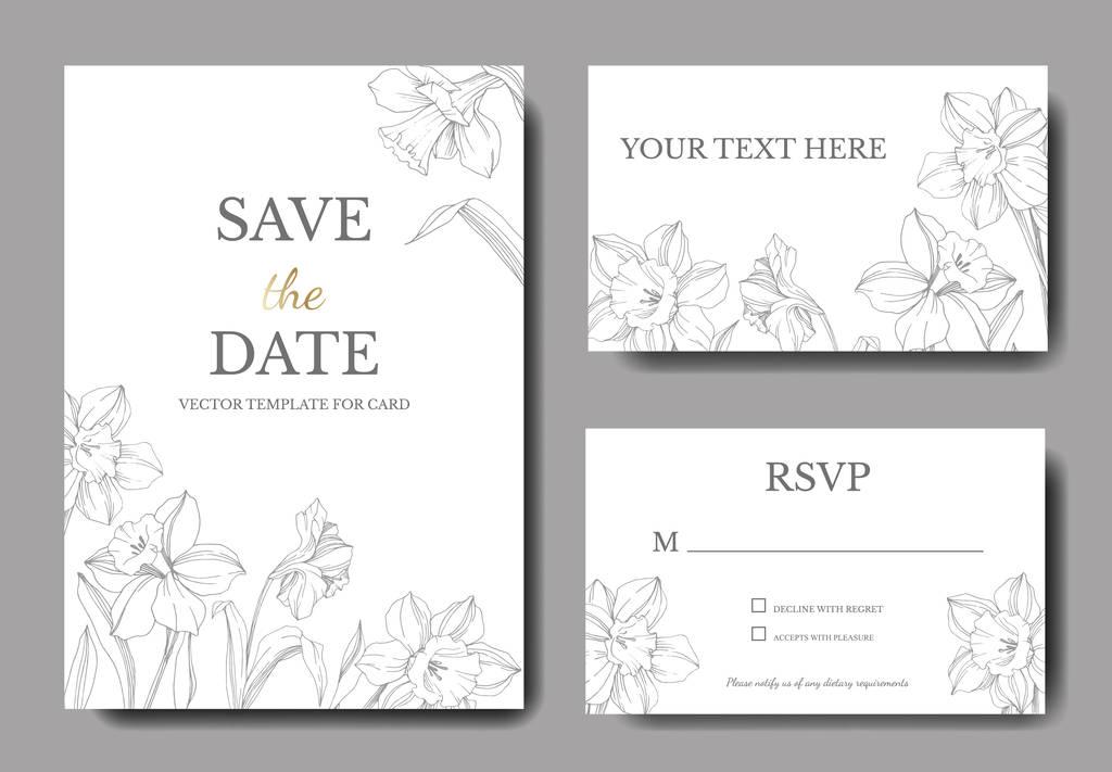 Vector Narcissus floral flower. Wild spring leaf isolated. Black and white engraved ink art. Wedding background card floral decorative border. Elegant card illustration graphic set banner.