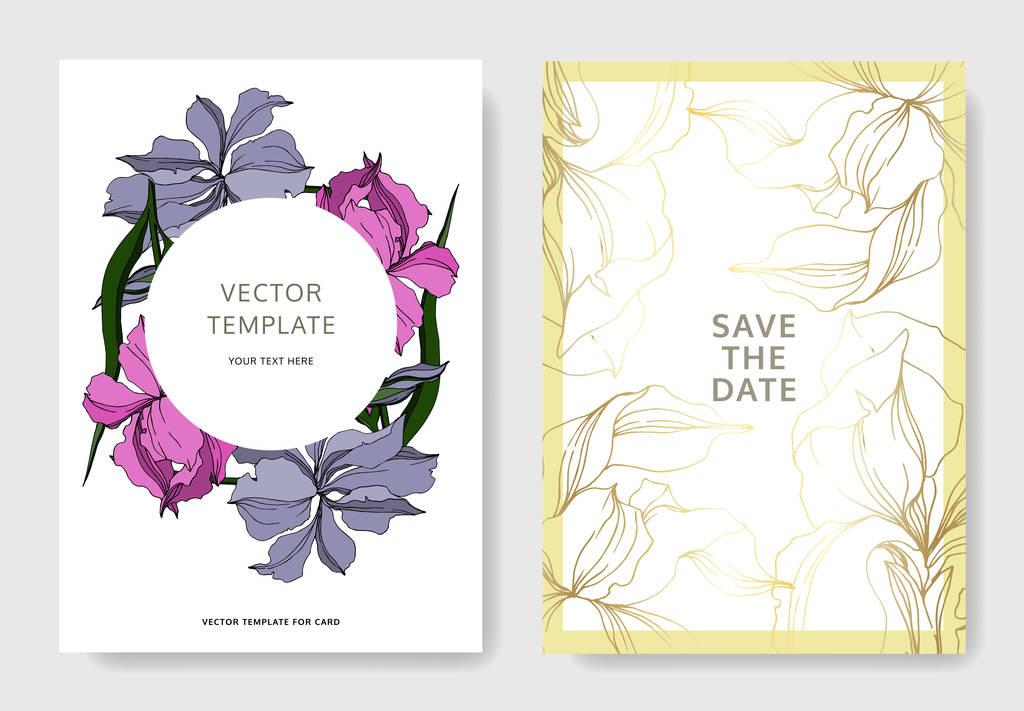 Vector Iris floral botanical flowers. Black and white engraved ink art. Wedding background card floral decorative border. Thank you, rsvp, invitation elegant card illustration graphic set banner.