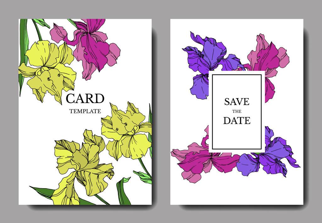 Vector Iris floral botanical flowers. Black and white engraved ink art. Wedding background card decorative border. Thank you, rsvp, invitation elegant card illustration graphic set banner.