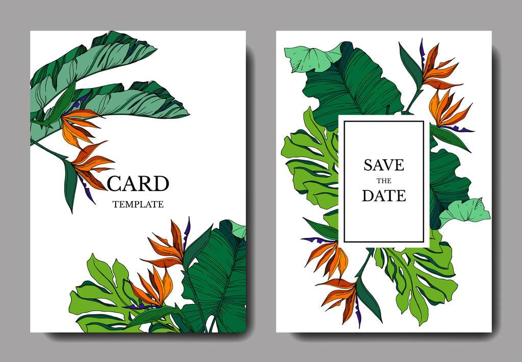 Vector Tropical floral botanical flowers. Engraved ink art. Wedding background card floral decorative border. Thank you, rsvp, invitation elegant card illustration graphic set banner.