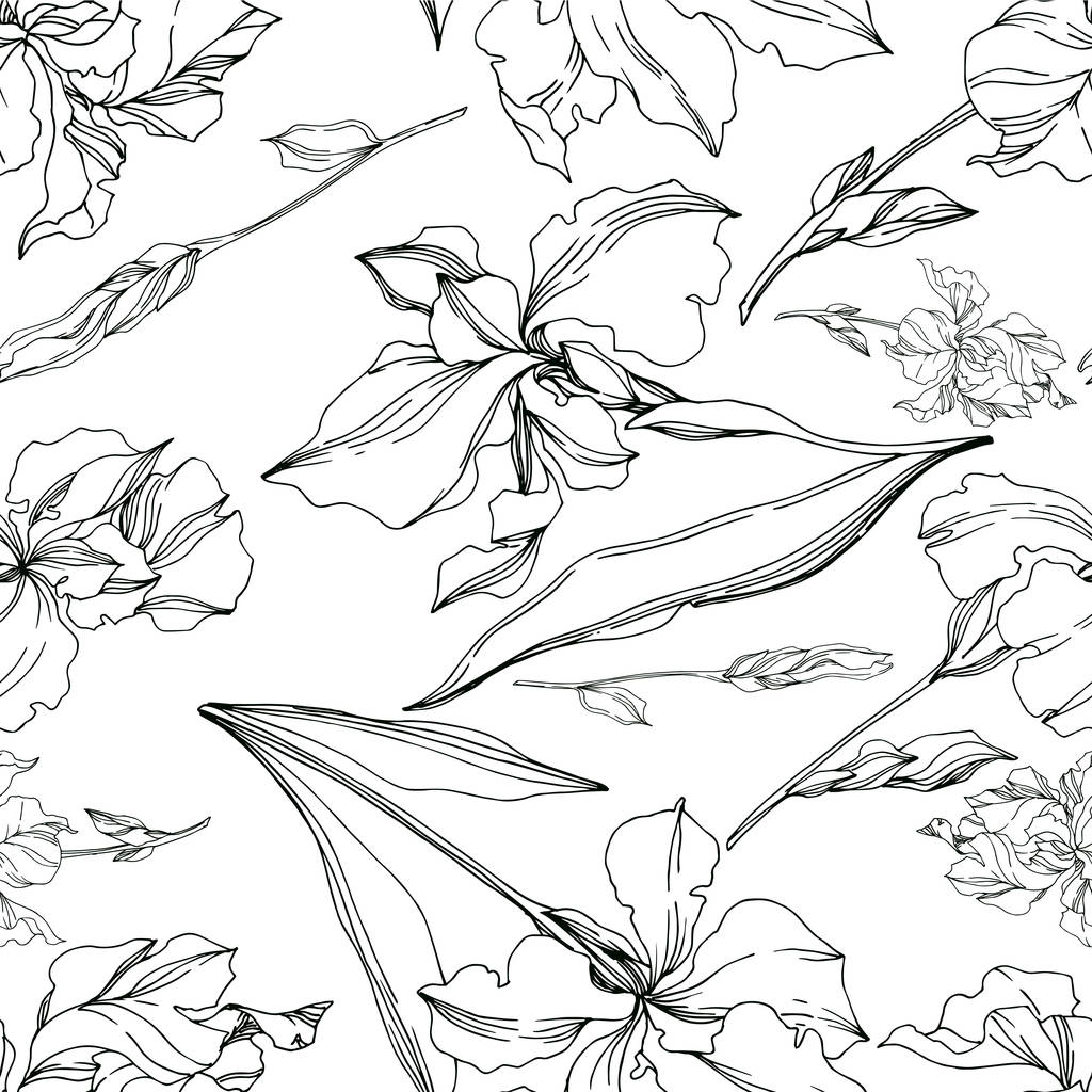 Vector Iris floral botanical flowers. Wild spring leaf wildflower isolated. Black and white engraved ink art. Seamless background pattern. Fabric wallpaper print texture.