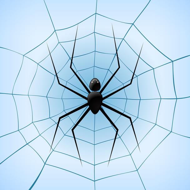 A Spiderweb with Spider on blue background. Vector Illustration - Vector, Image