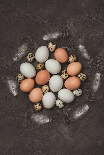 top view of chicken and quail eggs with feathers in circle, decorations for Easter - Photo, Image
