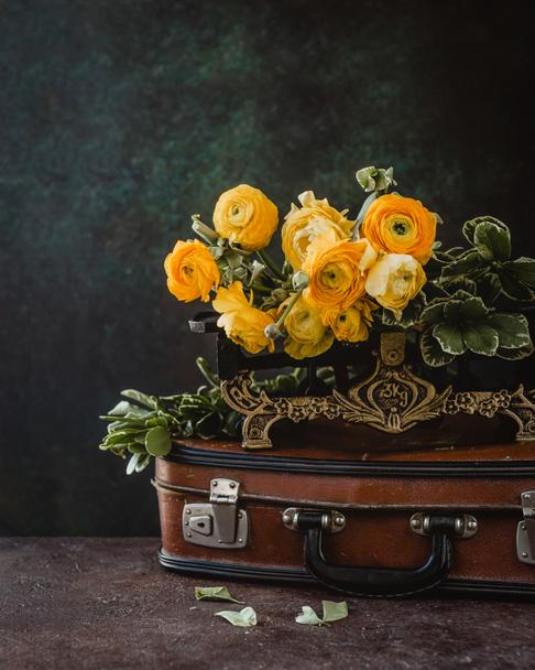 Ranunculus flowers - Photo, Image