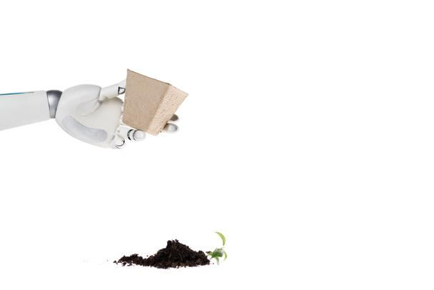 cropped shot of robot holding pot and heap of ground with plant spilled on floor isolated on white - Photo, Image
