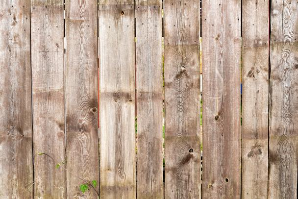 brown wooden fence background with green leaves - Photo, Image