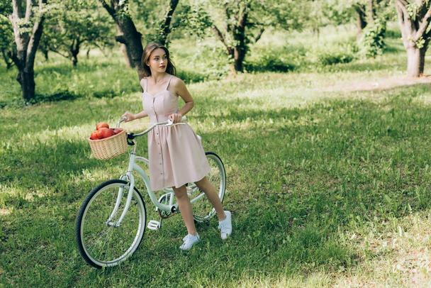 pretty young woman in dress holding retro bicycle with wicker basket full of ripe apples at countryside - Photo, Image