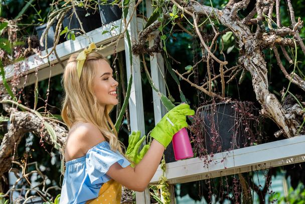 side view of beautiful smiling girl in rubber gloves holding sprayer and watering plants in greenhouse - Photo, Image