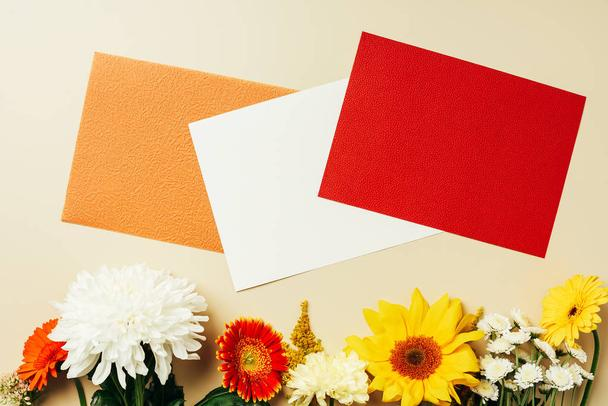 flat lay with wildflowers and blank colorful cards arrangement on beige backdrop - Photo, Image