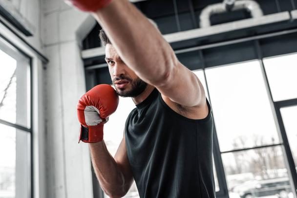 focused athletic man in boxing gloves training in gym - Photo, Image