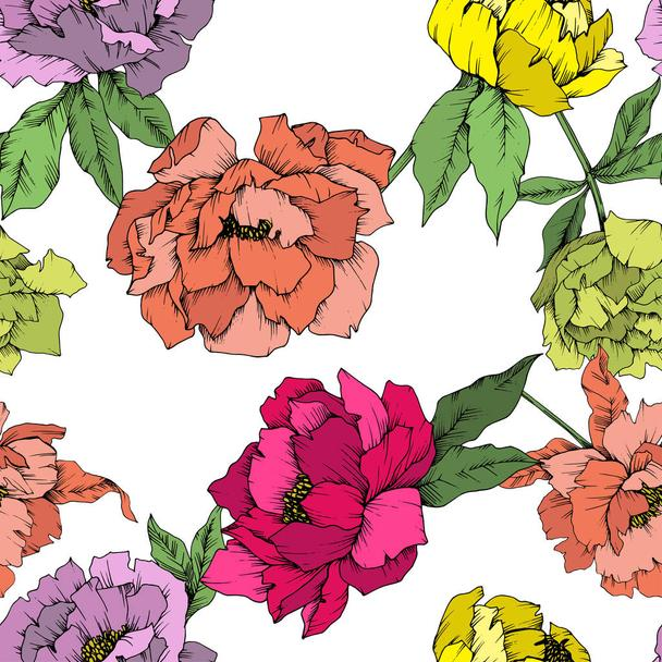 Vector Peony floral botanical flower. Wild spring leaf wildflower isolated. Engraved ink art. Seamless background pattern. Fabric wallpaper print texture. - Vector, Image