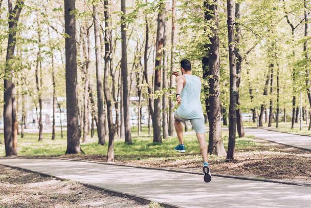 back view of young man in sportswear exercising in green sunny park - Photo, Image