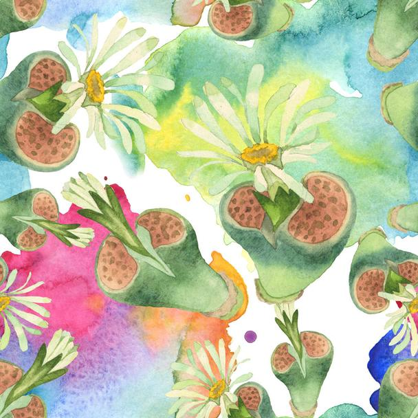 Succulent floral botanical flower. Wild spring leaf wildflower. Watercolor illustration set. Watercolour drawing fashion aquarelle. Seamless background pattern. Fabric wallpaper print texture. - Photo, Image