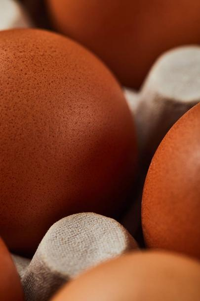 close up view of chicken eggs in carton box - Photo, Image