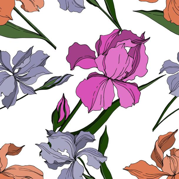 Vector Iris floral botanical flowers. Black and white engraved ink art. Seamless background pattern. - Vector, Image