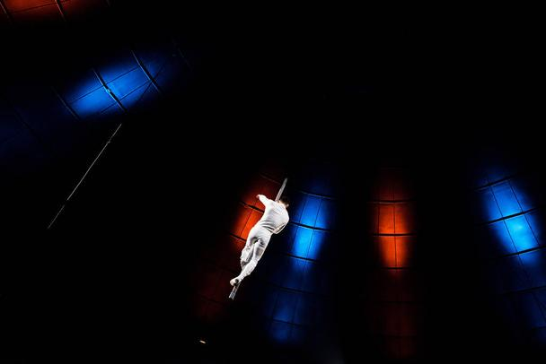 back view of acrobat performing on pole in arena of circus  - Photo, Image