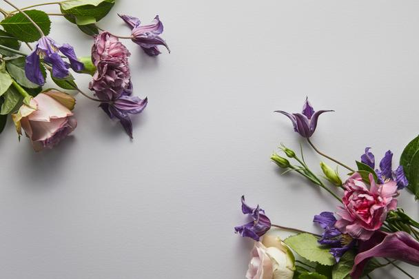top view of violet and purple flowers on white background - Photo, Image