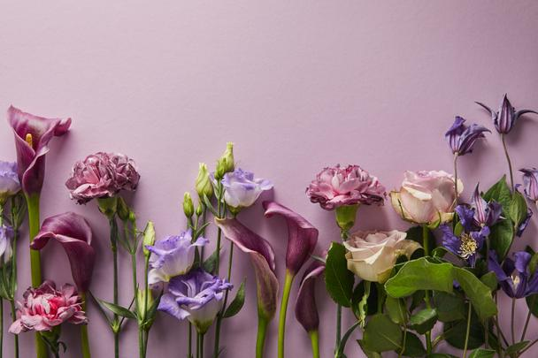 top view of beautiful flowers on violet background with copy space - Photo, Image