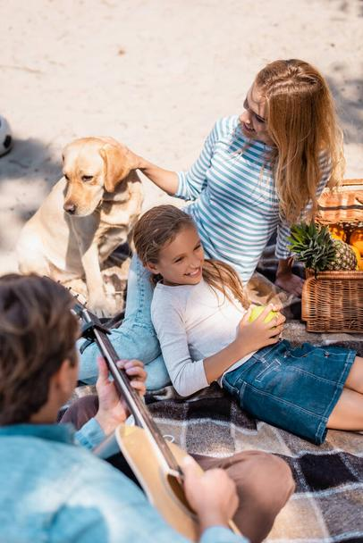 Overhead view of woman playing with golden retriever near daughter and husband with acoustic guitar on beach  - Photo, Image