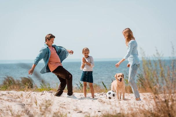 Selective focus of couple with child and golden retriever playing football on beach  - Photo, Image