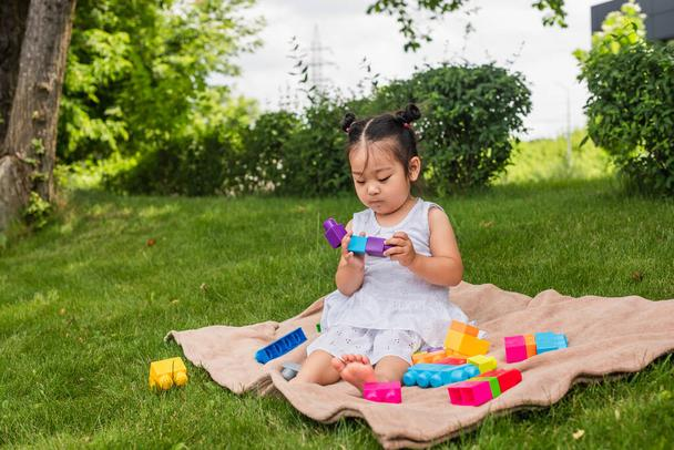 asian toddler girl in dress playing building blocks on picnic blanket in park  - Photo, Image