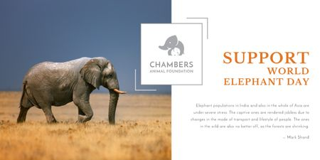 Support world elephant day poster Image Design Template