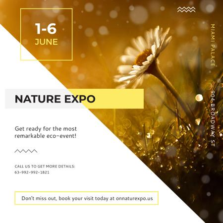Ontwerpsjabloon van Instagram van Nature Expo Invitation with Wild Flower