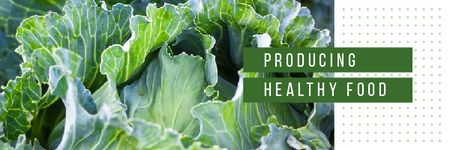 Healthy Food with Green Cabbage Email header Modelo de Design