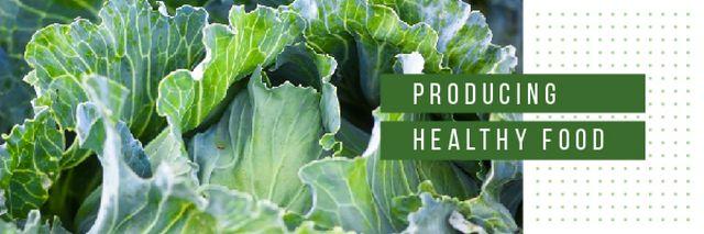Plantilla de diseño de Healthy Food with Green Cabbage Email header