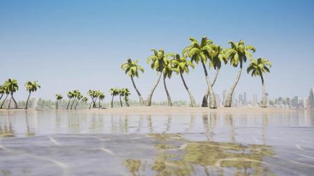 Plantilla de diseño de Island Landscape with Palm trees Zoom Background