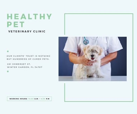 Ontwerpsjabloon van Medium Rectangle van Healthy pet veterinary clinic