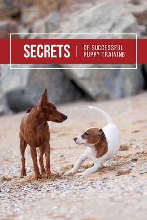 Pets Behavior Two Dogs on a Walk Tumblr Modelo de Design