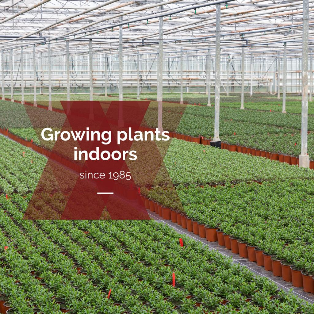 commercial garden greenhouses poster — Створити дизайн