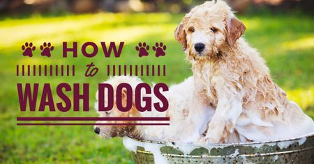 Plantilla de diseño de How to wash dogs advices with wet Dogs Facebook AD
