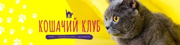 Cat Community Promotion Cute Scottish Fold | VK Community Cover