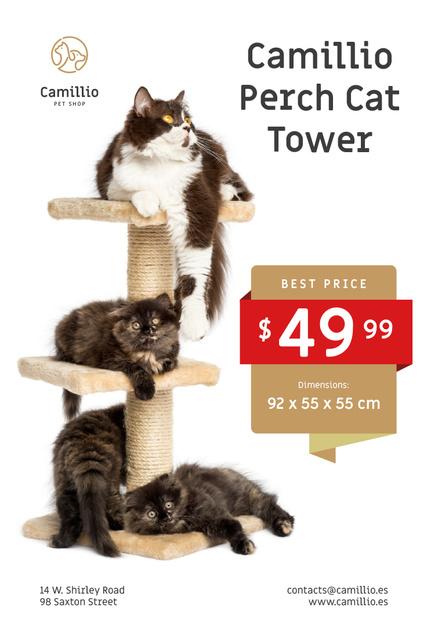 Pet Shop Offer with Cats Resting on Tower Pinterest Modelo de Design