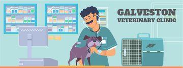 Vet taking care of dog