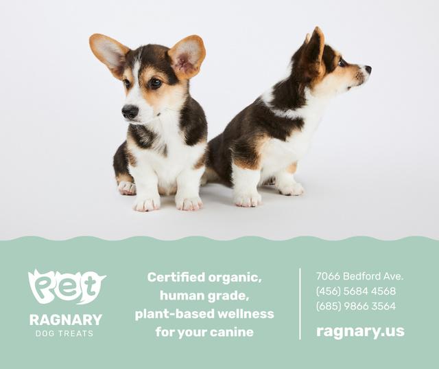Plantilla de diseño de Dog treats for cute Corgi Puppies Facebook