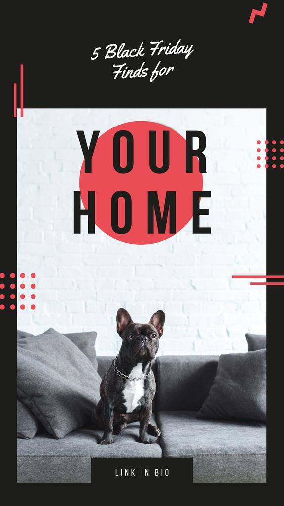 French bulldog sitting on sofa — Crear un diseño