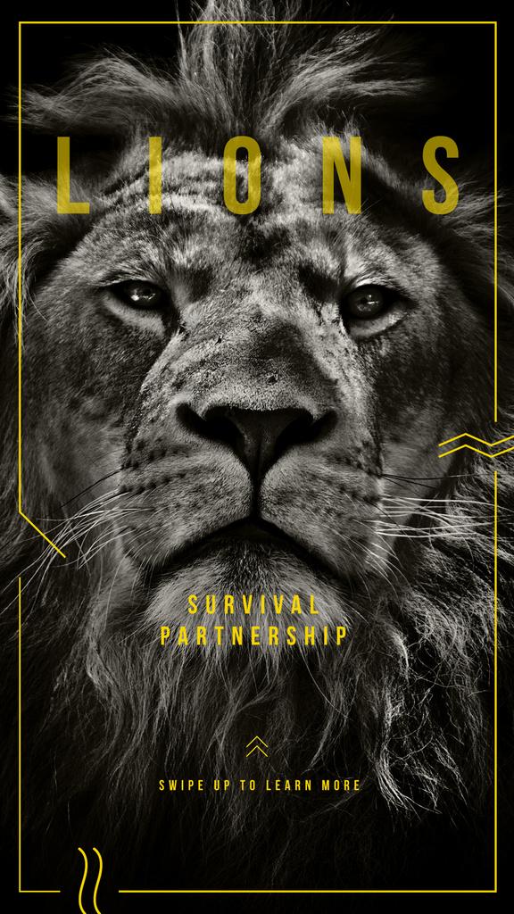 Wild male lion — Créer un visuel