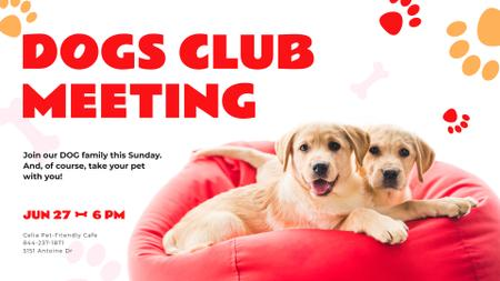 Dogs Club Promotion with Cute Puppies FB event cover Tasarım Şablonu