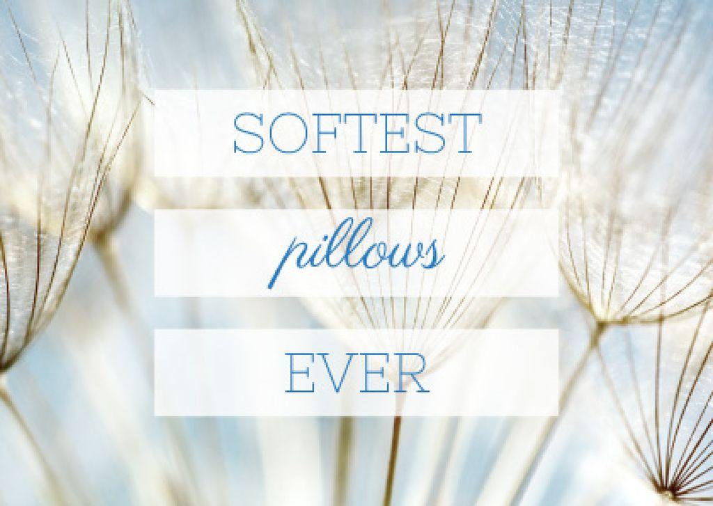 Softest Pillows Ad with Tender Dandelion Seeds Postcard Tasarım Şablonu