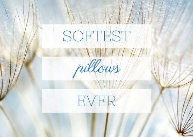 Ontwerpsjabloon van Postcard van Softest Pillows Ad with Tender Dandelion Seeds