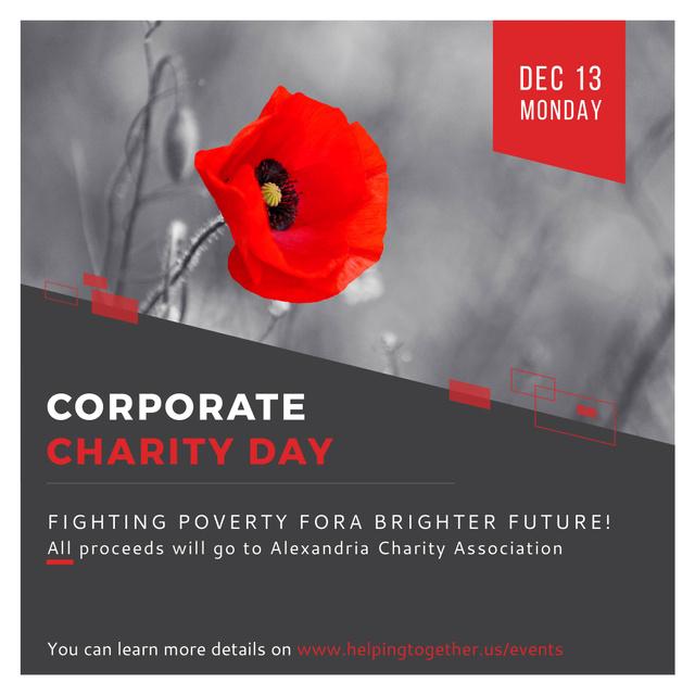 Ontwerpsjabloon van Instagram AD van Corporate Charity Day announcement on red Poppy