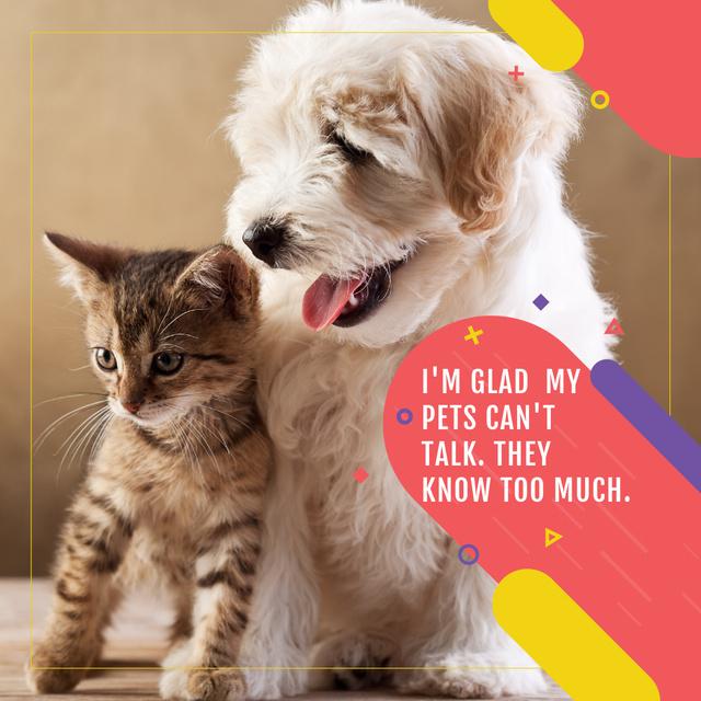 Szablon projektu Citation about not talking pets  Instagram