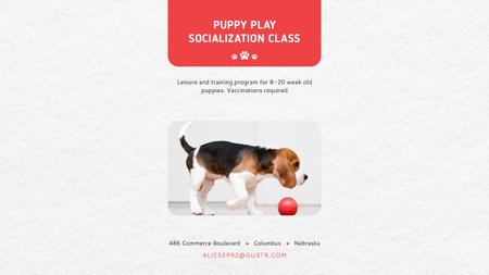 Plantilla de diseño de Puppy play socialization class Youtube