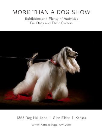 Ontwerpsjabloon van Poster US van Dog Show announcement with pedigree pet